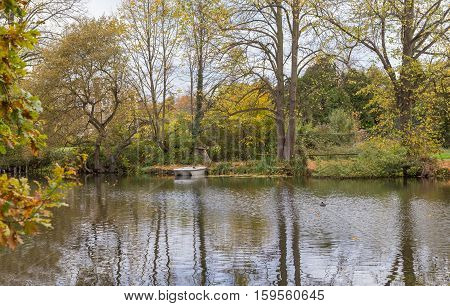 Took this shot on a visit to The Glade Sidcup Kent on a bright November afternoon and loved the reflections in the lake.
