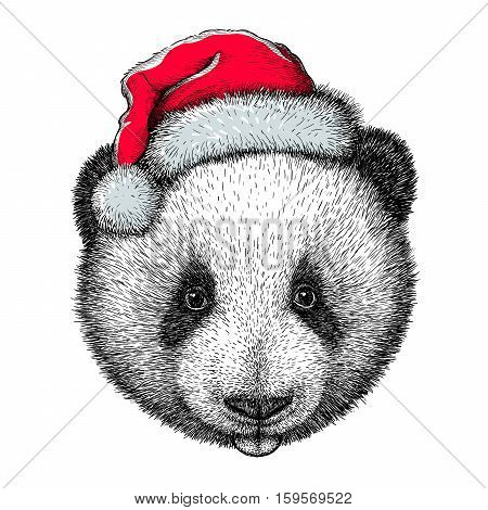panda, black and white engrave. Christmas hat.