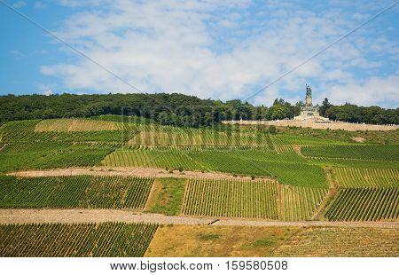 Vineyards And Germania Monument In Rudesheim