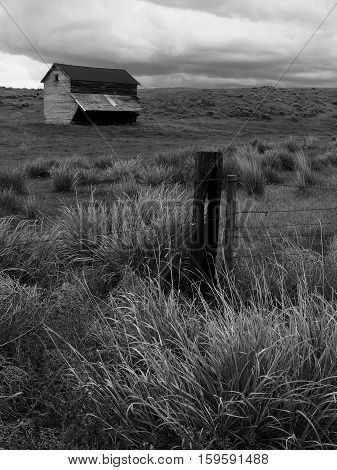 An old building sits in a ranch field in Eastern Oregon on a spring afternoon.