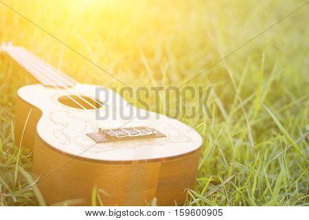 Ukulele on green grass with soft light