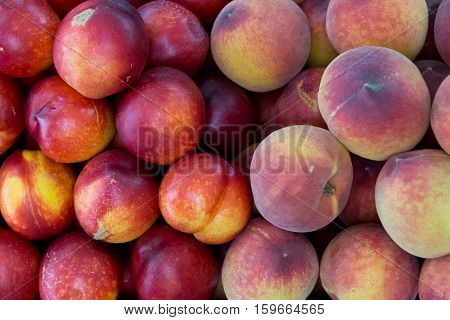 Group of fresh peaches and nectarines as background