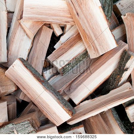 Scattered logs of oak tree for making a fire