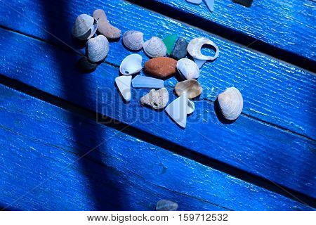 Shells on blue bench with stroke of shade. Flat layout