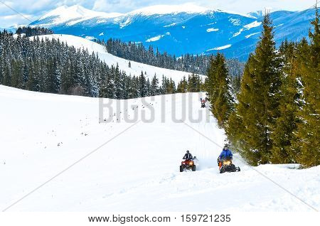 group of people in the woods on snowmobiles