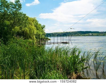 a quiet place for fishing on the lake