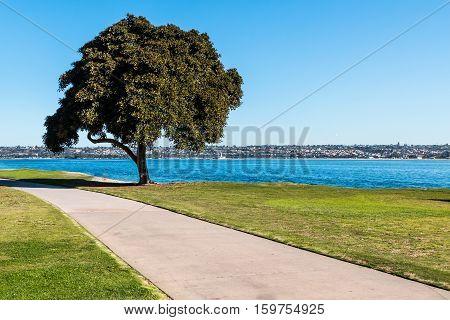 Pathway through Ski Beach Park on Mission Bay in San Diego, California.