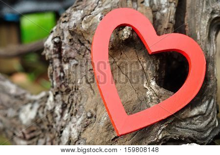 Valentines day. A red heart isolated against a wooden truck