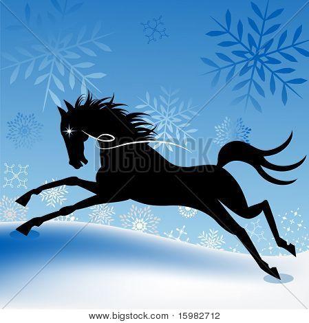 winter freedom horse