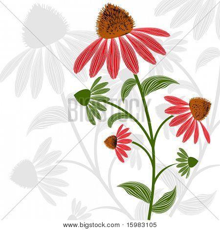 Beautiful gerber fuchsia Daisy