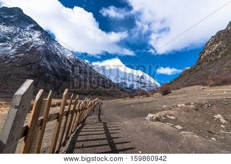 Beautiful wooden wall for Yaks autumn landscape of Daocheng Yading National Park Sichuan China.