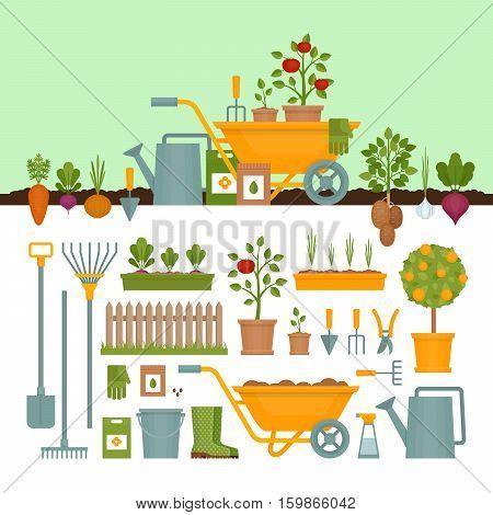 Vegetable garden. Garden tools. Banner with vegetable garden. Flat style vector illustration.