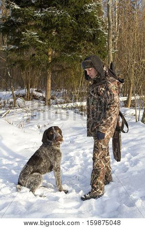 hunting in the winter. man in camouflage and hunting dog drathaar pointer.
