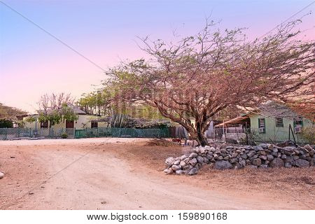 Traditional arubean houses in the cunucu on Aruba island in the Caribbean at sunset