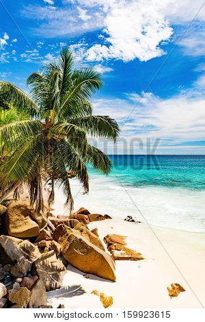 Photo of a tropical island. The Seychelles.