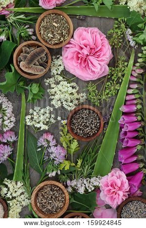 Herbal medicine selection of fresh and dried herbs and flowers used in natural alternative remedies.