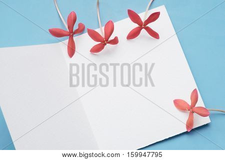 White Wishing Card with red Ixora Blue Tone background with copy space