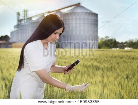 Agronomist In Field With Silos Behind