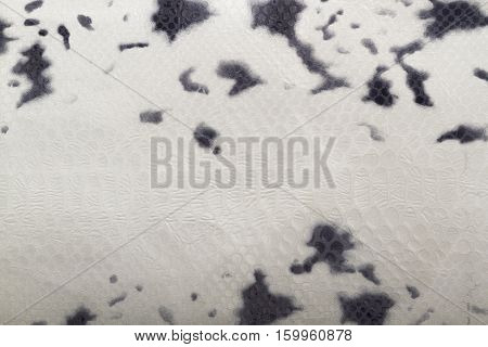 Light spotted reptile leather texture as background