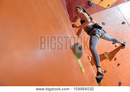 Up and down, Pleasant delighted young womna using safe equipment and climbing in a gym while enjoying her hobby