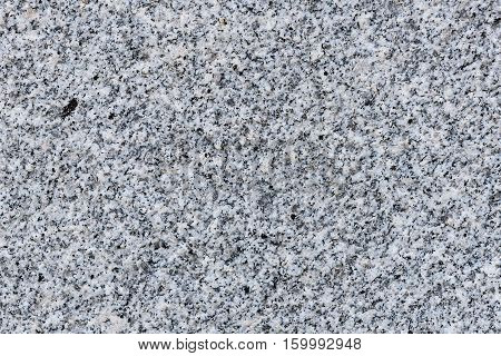 Grey And Grainy Granite Or Marble Texture For Background.