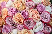 stock photo of lilas  - A floral arrangement made off big orange white and purple lila roses - JPG