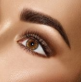 Beauty Brunette Woman Eye with Perfect Makeup. Beautiful Professional Make-up. Perfect eyebrows, eye poster