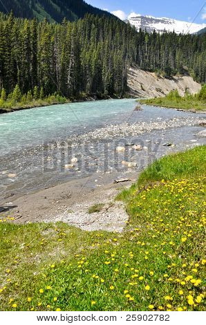 Vermilion river at Kootenay National Park, Canada