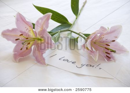 Pink Lillies And A Love You Note