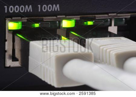 Gigabit Plugged