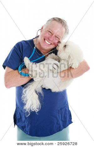 a Happy Veterinarian gets a kiss from one of his patients as he checks her heart beat and lungs