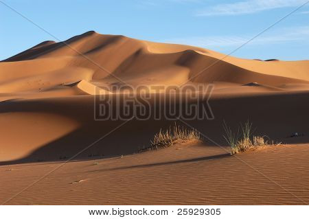 Sand dunes of Erg Chebbi in the Sahara Desert, Morocco