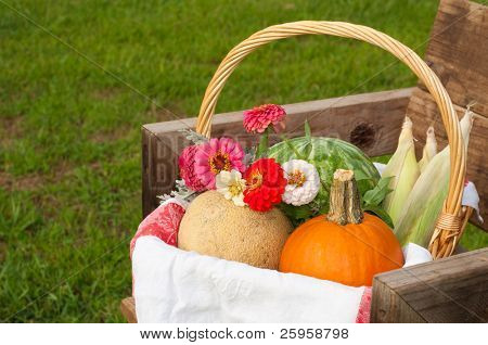 Harvest basket on rustic chair, close up