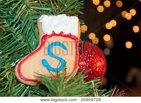 Santa's own stocking shaped cookie up in Christmas tree