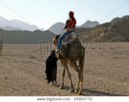 Tourist ride with camel