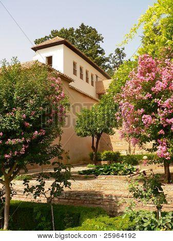Parc of Alhambra, Granada, Andalousia, Spain, Europe.