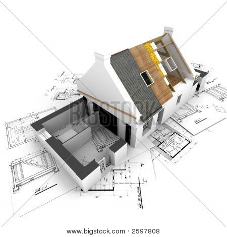 House With Exposed Roof Layers And Plans