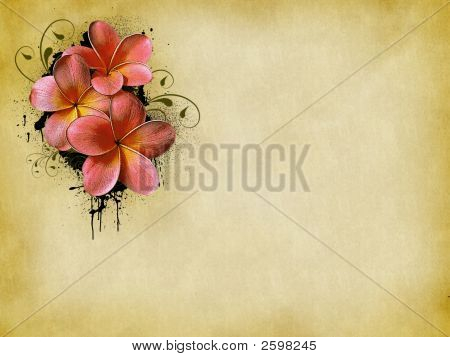 Floral Background  1