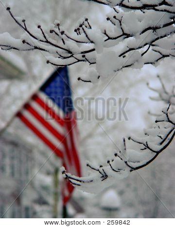 Flag With Snow