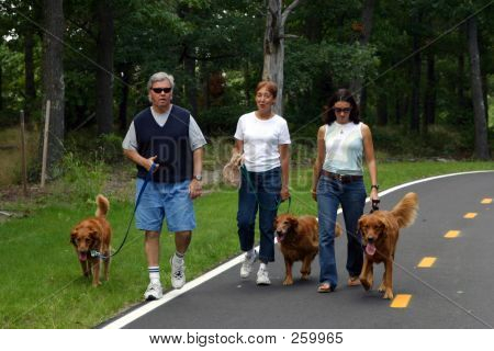 Family Walking Dogs 001
