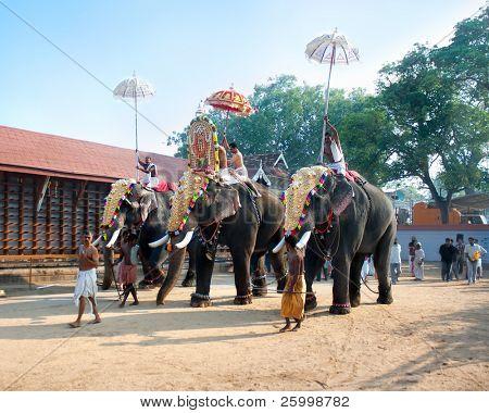 COCHIN, INDIA - FEBRUARY 03 :Parade with gold caparisoned elephants at the annual festival in Siva Temple, February 03. 2009. Cochin ,Kerala,  India.
