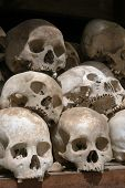 Skulls from a mass grave of Khmer Rouge victims in Choeung Ek aka the Killing Fields near Phnom Penh