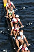 PRAGUE - June 6: Female rowing team rowing ahead during a boat-race in Prague, Czech Republic, on Ju
