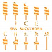 Vector Illustration Logo For Natural Sea Buckthorn Ice Cream On Stick. Ice Cream Pattern Consisting  poster