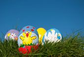 stock photo of duck egg blue  - Easter chick painted on an egg shell peeking out of another painted egg shell - JPG