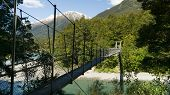 Suspension Bridge From Rope And Wood In Mount Aspiring National Park, New Zealand poster
