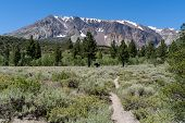 Hiking Trail Leads To Parker Lake In June Lake California In The Eastern Sierra Nevada Mountains. Le poster