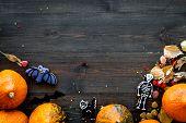 Halloween Concept, Halloween Mood. Pumpkins And Cute Figures Of Halloween Evils. Skeleton, Bats. Dar poster