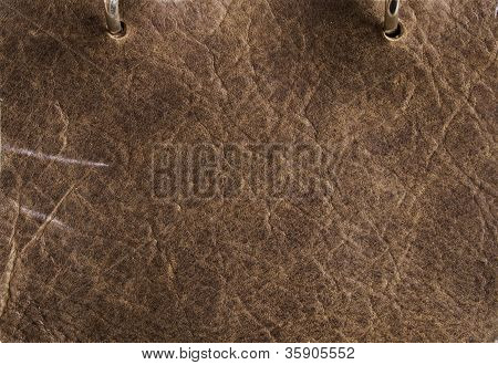 Chestnut Leather Detail