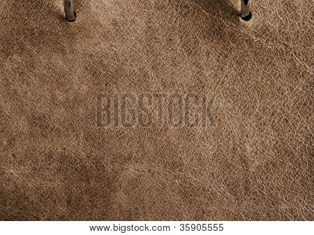 Pinto Light Brown Leather